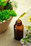 Medicina di erbe con la bottiglia del contagoccia Fotografia Stock