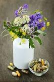 Medicina di erbe e piante Fotografie Stock Libere da Diritti