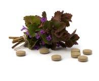 Medicina di erbe isolata su priorità bassa bianca Fotografia Stock Libera da Diritti