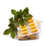 Medicina di erbe isolata su priorità bassa bianca Immagine Stock