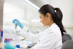 Medicina do laboratório Foto de Stock