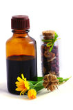 Medicina erval Imagem de Stock Royalty Free