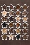 Medicina erval chinesa Imagem de Stock Royalty Free