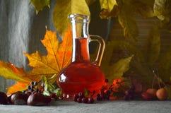 Medicina erval natural das tinturas Fotografia de Stock Royalty Free