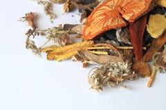 Medicina herbaria Imagen de archivo libre de regalías
