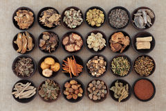 Medicina herbaria china Fotos de archivo libres de regalías