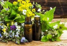 Medicina herbaria con los exracts de las plantas y las botellas de la esencia foto de archivo libre de regalías
