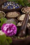 Medicina herbaria, fondo de madera de la tabla Fotos de archivo libres de regalías