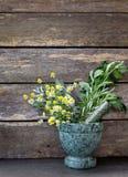 Medicina herbaria - manojos frescos de hierbas en mortero de mármol verde imagen de archivo libre de regalías