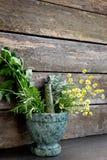 Medicina herbaria - manojos frescos de hierbas en mortero de mármol verde imagen de archivo
