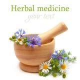 Medicina herbaria - manzanilla, cornflowers Imágenes de archivo libres de regalías