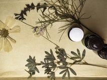 Medicina herbaria natural con las hierbas y las flores frescas, aceites esenciales del aromatherapy en fondo del papel fotos de archivo