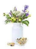 Medicina herbaria y plantas Foto de archivo