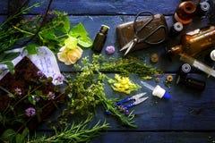 Medicina natural con las hierbas curativas y el equipo como botellas, sc Imagen de archivo libre de regalías