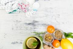 Medicina natural contra o conceito convencional da medicina imagem de stock royalty free