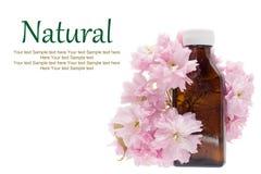 Medicina natural - extracto herbario, botella Foto de archivo