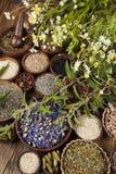 Medicina natural, fondo de madera de la tabla Imagenes de archivo