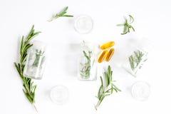 Medicina natural - opinião superior das ervas fotos de stock
