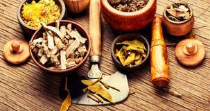 Medicina naturale delle erbe immagini stock libere da diritti