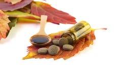 Medicina per il concetto di immunità Fotografie Stock