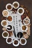 Medicina tradicional da acupuntura Imagem de Stock Royalty Free