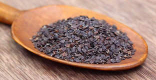 Medicinal basil seeds Royalty Free Stock Photography