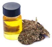 Medicinal cannabis with extract oil in a bottle Stock Photos