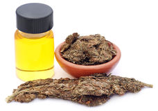 Medicinal cannabis with extract oil Stock Images