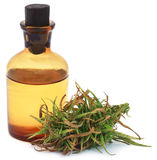 Medicinal cannabis with extract oil in a bottle Royalty Free Stock Images