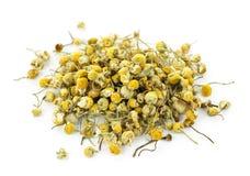 medicinal chamomileörtar arkivfoton