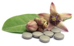 Medicinal Crown flower with pills Stock Photos