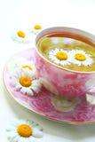 medicinal decoction Royaltyfri Foto