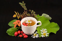 Medicinal decoction Stock Image