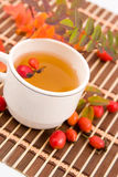 Medicinal decoction with hips Stock Images