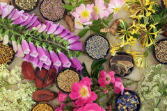 Medicinal Flower and Herb Selection Stock Images