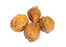 Medicinal haritaki fruit Stock Photos