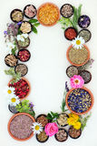 Medicinal Healing Herbs and Flowers Royalty Free Stock Image