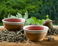 Medicinal herb Stock Image