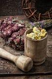 Medicinal herb Stock Photos