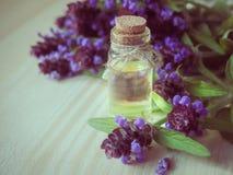 Medicinal herb. Common self heal Prunella Vulgaris scented oil. Medicinal herb. Common self heal Prunella Vulgaris scented oil stock images