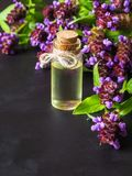 Medicinal herb. Common self heal Prunella Vulgaris scented oil.  royalty free stock images