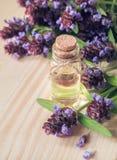 Medicinal herb. Common self heal Prunella Vulgaris scented oil. Medicinal herb. Common self heal Prunella Vulgaris scented oil royalty free stock photography