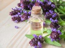 Medicinal herb. Common self heal Prunella Vulgaris scented oil. Medicinal herb. Common self heal Prunella Vulgaris scented oil stock photos