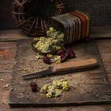 Medicinal herb Royalty Free Stock Photos