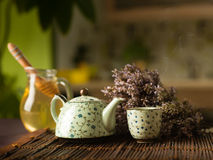 Medicinal herbal hot tea Royalty Free Stock Images