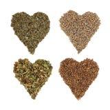 Medicinal Herbs Stock Images