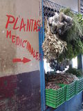 Medicinal herbs!. Medicinal herbs in a market downtown San Jose, Costa Rica Stock Image