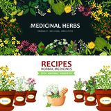 Medicinal Herbs Banners. Color horizontal banners with title depicting medicinal herbs in clay mortar and recipes vector illustration Stock Photo