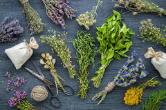 Medicinal herbs bunches, sachet and scissors. Stock Image
