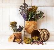 Medicinal herbs and flowers. Healing herbs in birch bark boxes. On a light wooden background royalty free stock photography